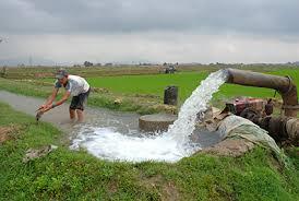 bơm tsurumi tứoi nước nông nghiệp